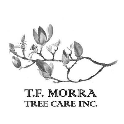 T.F. Morra Tree Care Logo